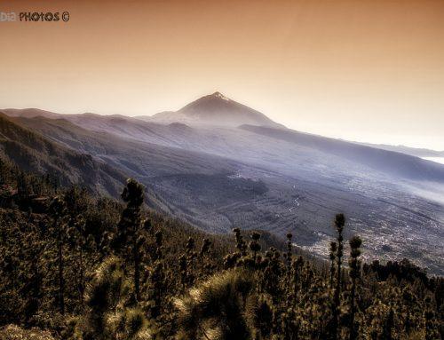 Una semana en Tenerife – Dia 3