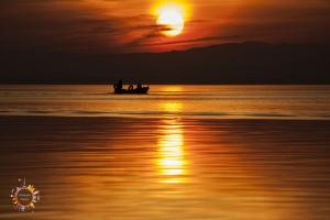 albufera, atardecer, sunset, valencia, mejor atardecer, best sunset